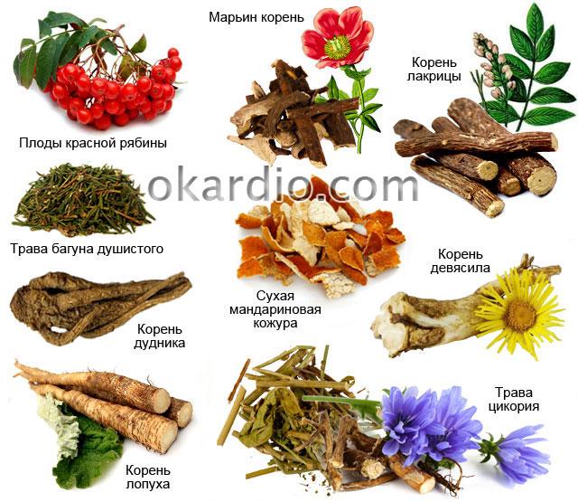 ингредиенты настоек для лечения инсульта