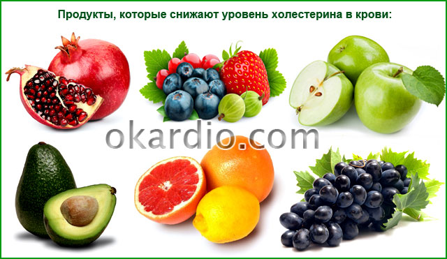 продукты, которые снижают уровень холестерина в крови