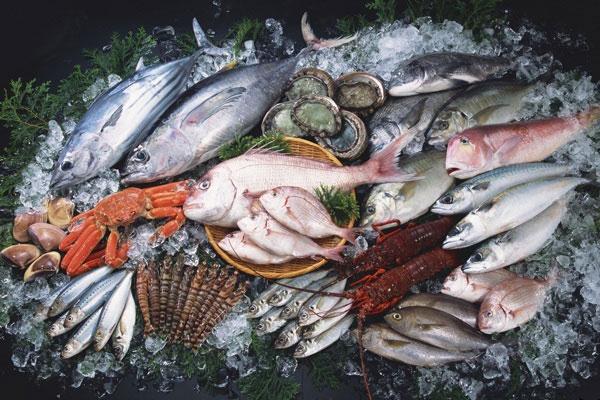 виды морской рыбы
