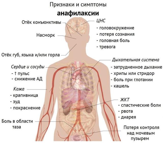 Изображение - Влияет ли алкоголь на давление человека 125-04