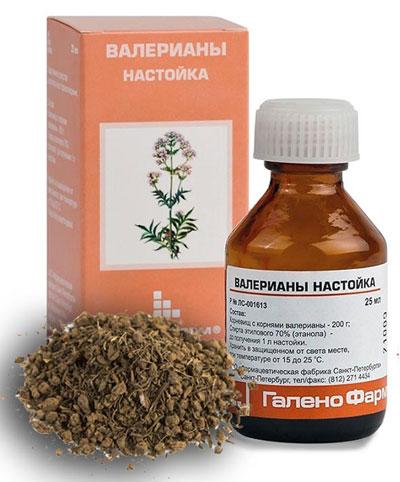 растение валериана и его настойка