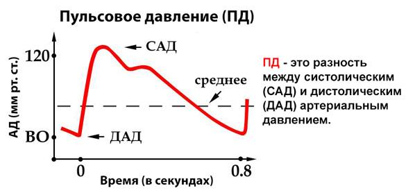 Изображение - Верхнее давление высокое а нижнее низкое почему 134-01