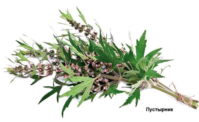 травы понижающие холестерин в крови