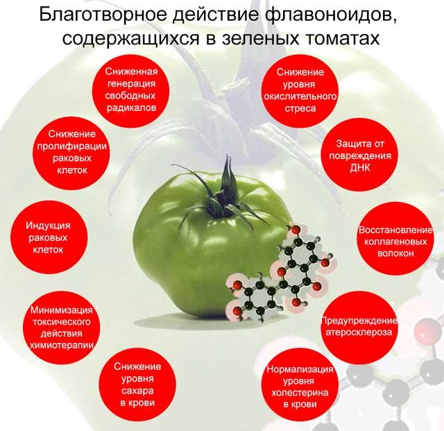 полезное воздействие зеленых помидоров, содержащих флаваноиды, на организм человека