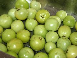 Правильное лечение варикоза зелеными помидорами, показания, прогноз