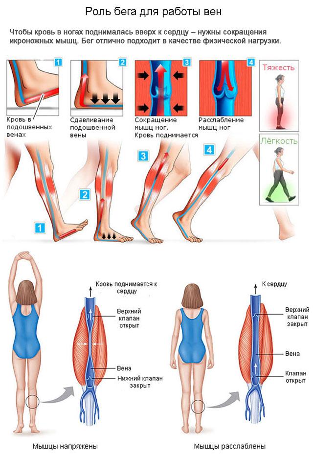 роль бега при варикозе ног
