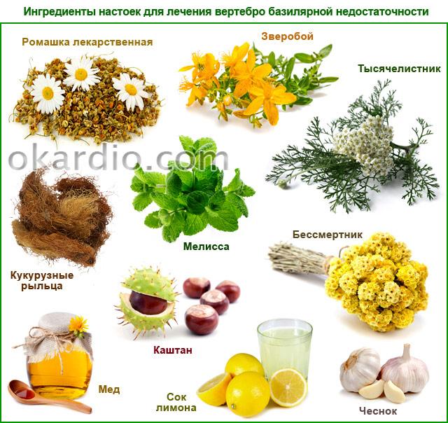 ингредиенты настоек для лечения вертебро базилярной недостаточности