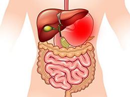 Обзор желудочного кровотечения: причины, диагностика, лечение