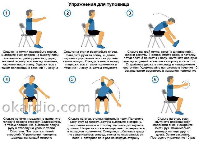упражнения для туловища