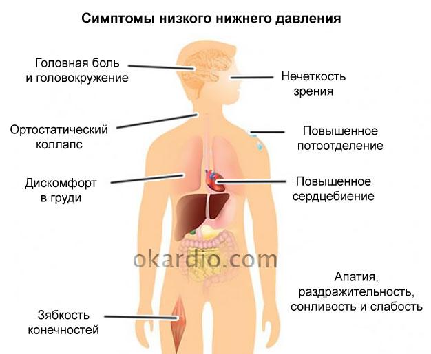 Изображение - Лечение низкого нижнего артериального давления 109-03