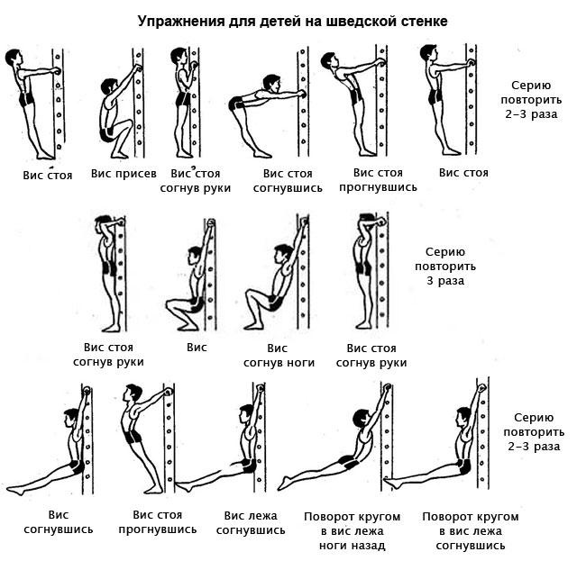 комплекс упражнений для ребенка с использованием шведской стенки