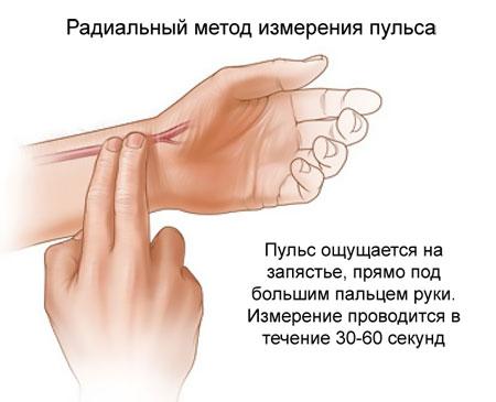 радиальный метод измерения пульса