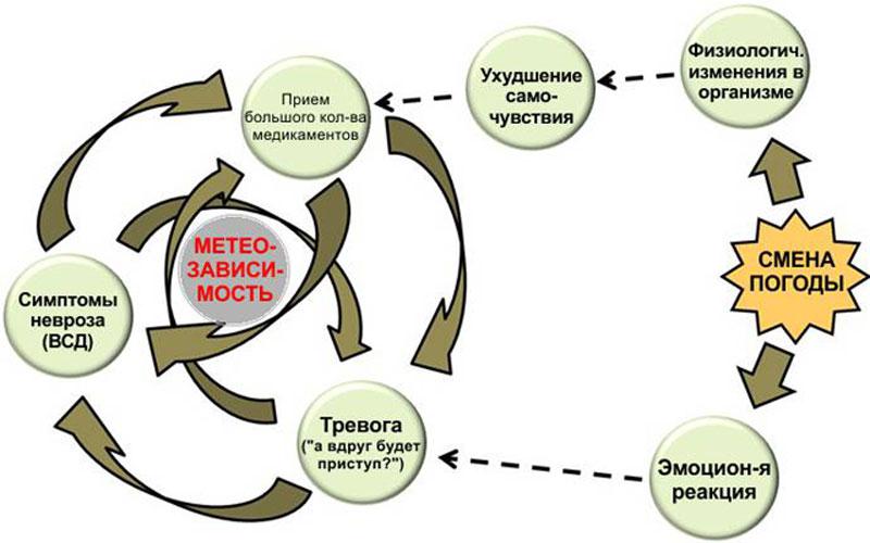 Симптомы вегето-сосудистой дистонии у женщин, лечение