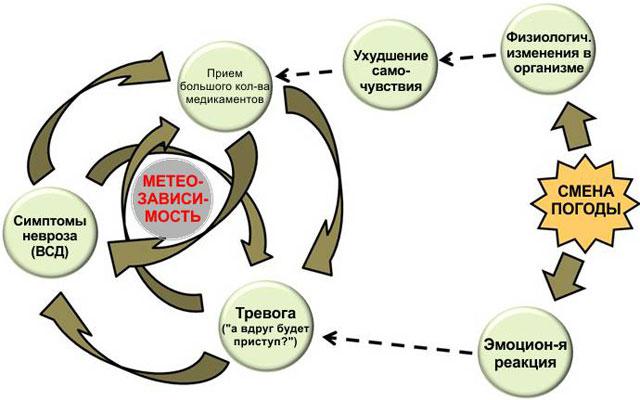 взаимосвязь возникновения ВСД от внешних факторов