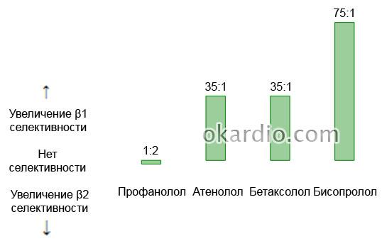 β1-селективность бисопролола