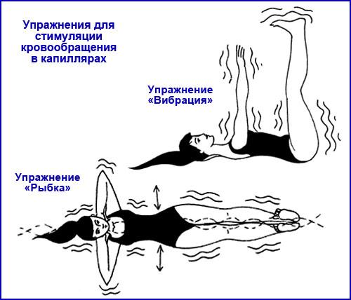 упражнения для стимуляции кровообращения в капиллярах