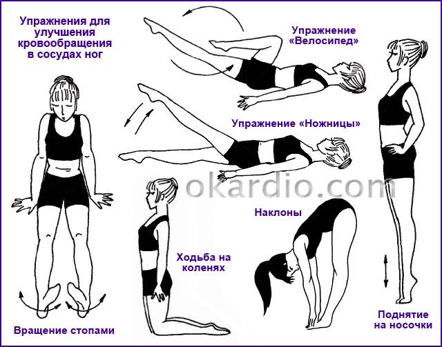 упражнения для улучшения кровообращения в сосудах ног