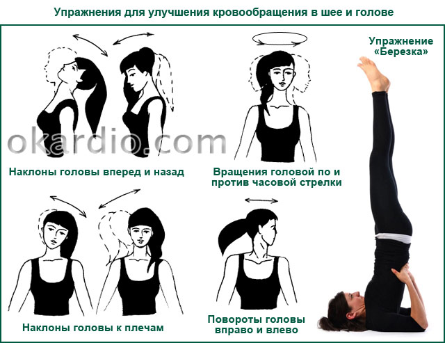 упражнения для улучшения кровообращения в шее и голове