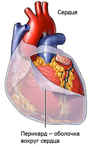 Шумы в сердце у взрослых: причины, виды, симптомы и лечение