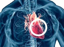 Причины, симптомы и лечение ревматизма сердца