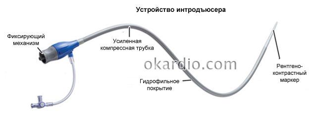 интродьюсер