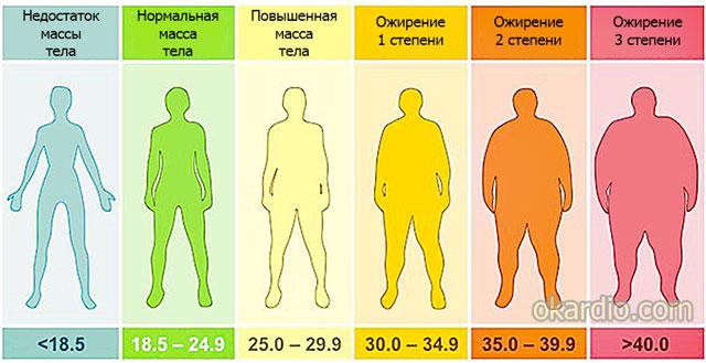 таблица индексов массы тела