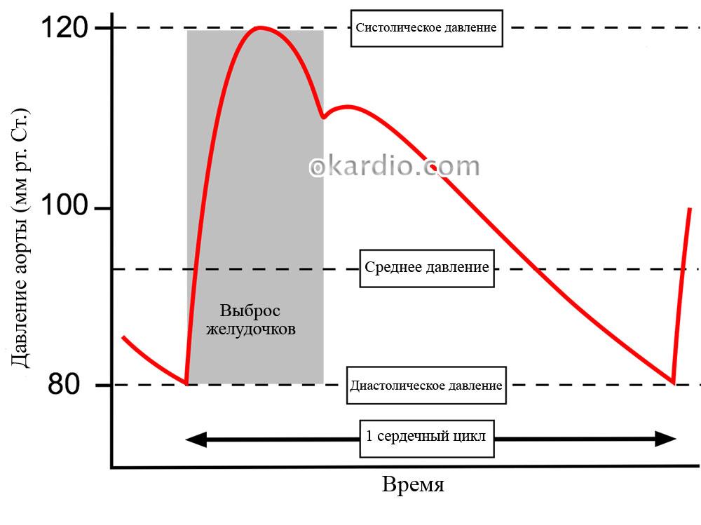 Большая разница между верхним и нижним давлением: причины и лечение