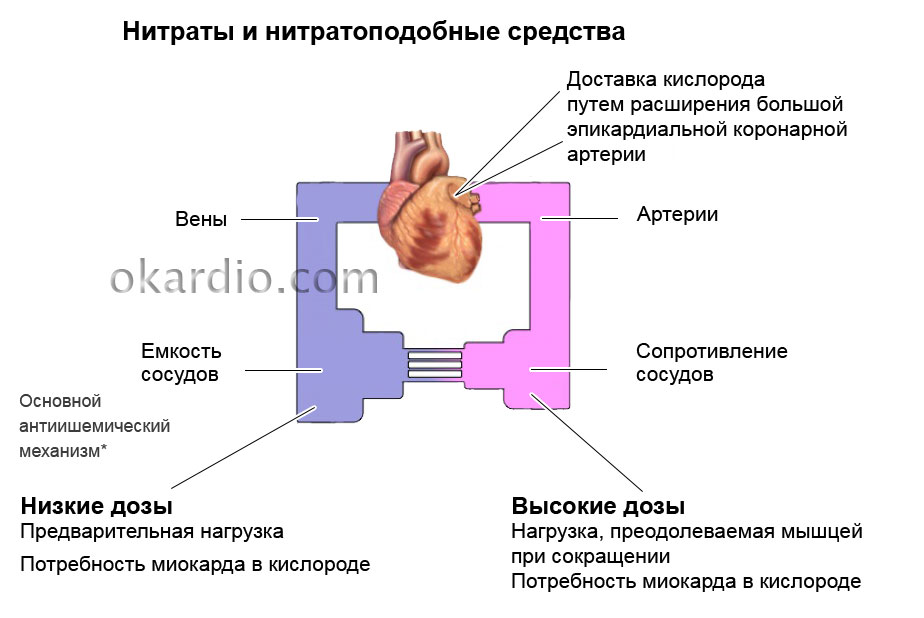 От чего помогает Нитроглицерин: стенокардия, инфаркт, сердечная ...