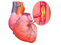 стетоскоп в форме сердца и сердцебиения