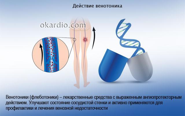 действие венотоника