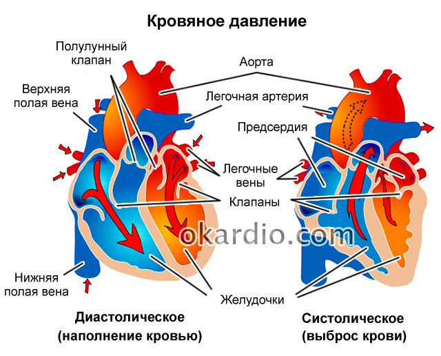 Что значит артериальная гипертензия 1 степени риск 2