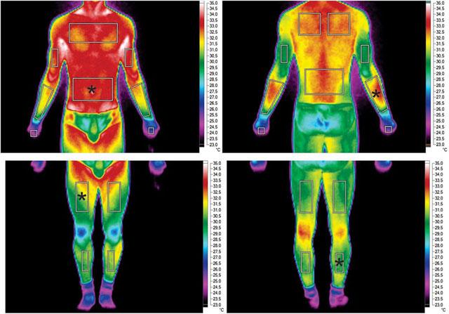 термограмма