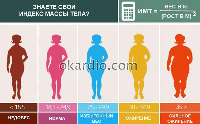 характеристика индекса массы тела (ИМТ)