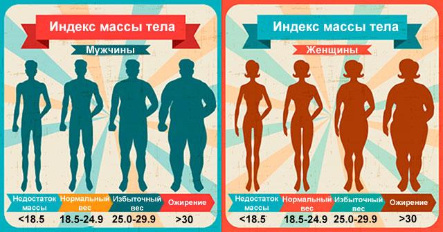 индекс массы тела для мужчин и женщин