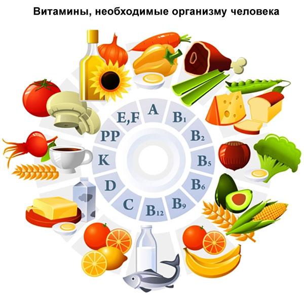 витамины, которые нужны организму человека